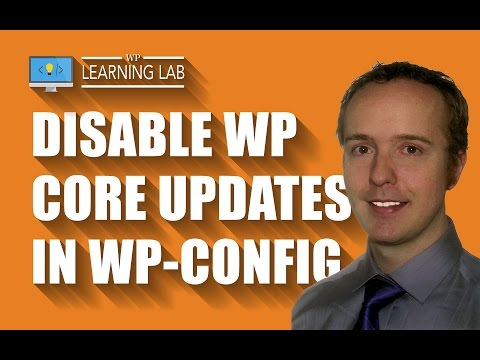 Disable WordPress Core, Theme & Plugin Updates Via wp-config.php   WP Learning Lab