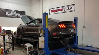 Supercharged Whipple GT350 dyno