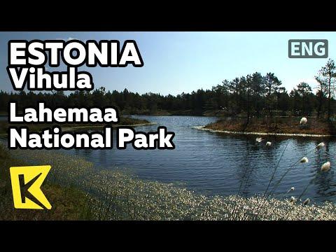【K】Estonia Travel-Vihula[에스토니아 여행-비훌라]라헤마 국립공원/Lahemaa National Park/Wetland/Lake