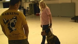 Aggression / Attack On Command Dog Training - Www.k9-1.com