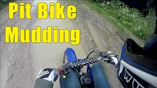 Pit Bike Mudding!