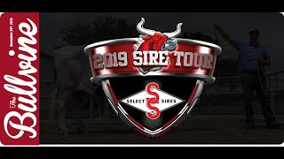 Select Sires Sire Tour 2019