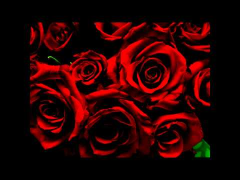 C21 FX - Blood Red Roses Extended - YouTube