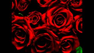 C21 FX - Blood Red Roses Extended