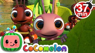 Download Mp3 Row Row Row Your Boat More CoComelon Nursery Rhymes Kids Songs