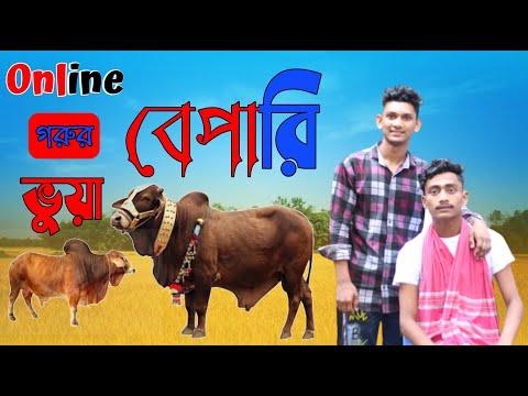 Online গরুর ভুয়া