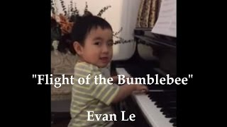 flight of the bumblebee baby version march 16 2015
