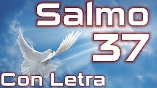 Salmo 37 - El camino de los malos (Con Letra) HD.