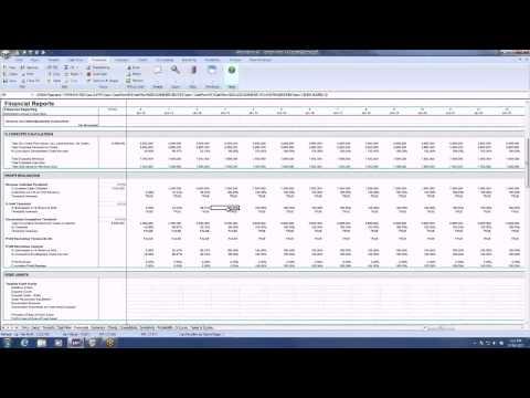 Tutorial: The Financials Sheet, Balance Sheet and Profit & Loss