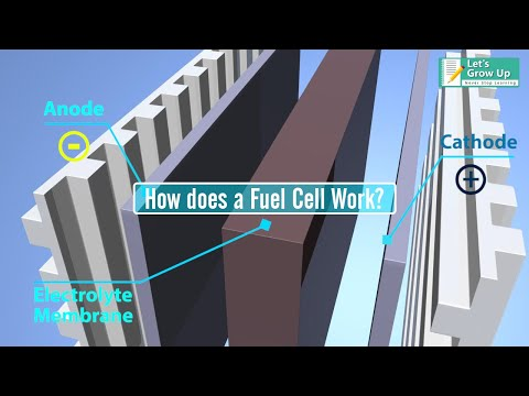 How does a hydrogen fuel cell work? | what is hydrogen fuel cell | hydrogen cell explain