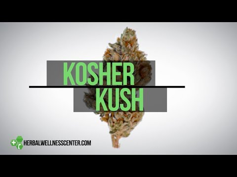 Kosher Kush Strain Review