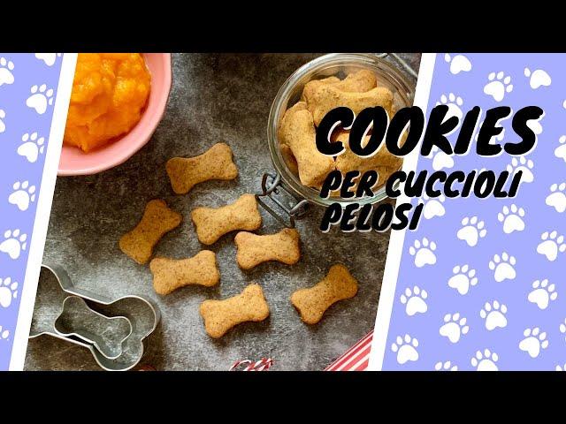 Cookies per gli amici a quattro zampe - biscottini per cani