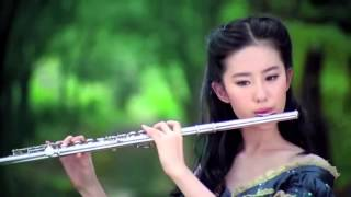 Beautiful Chinese Music【31】Traditional【The Red Plum Blossoms】