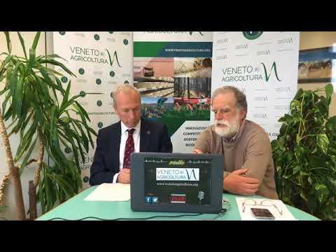 Radio Veneto Agricoltura - Vigneti resistenti