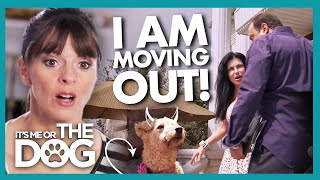 Victoria is Shocked to Arrive While Owner is MOVING OUT! | It's Me or The Dog