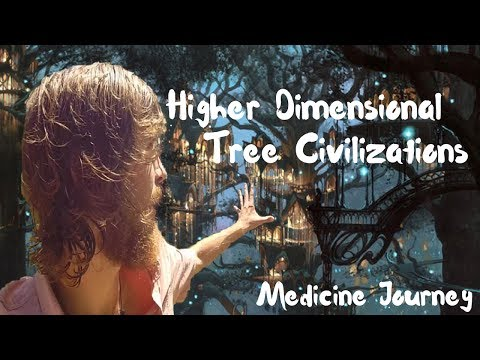 Visionary Experience - Discovering Tree Civilizations