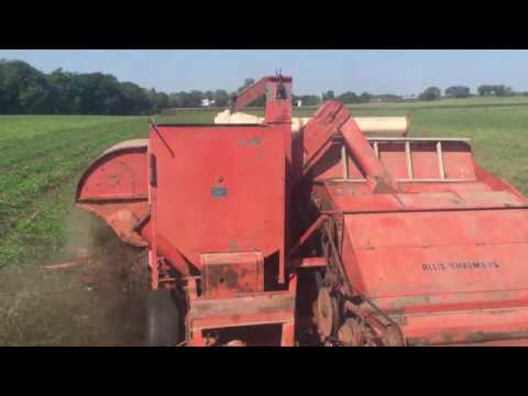 Combining Red Clover Seed(Certified Organic)with Allis Chalmers 72 All-Crop