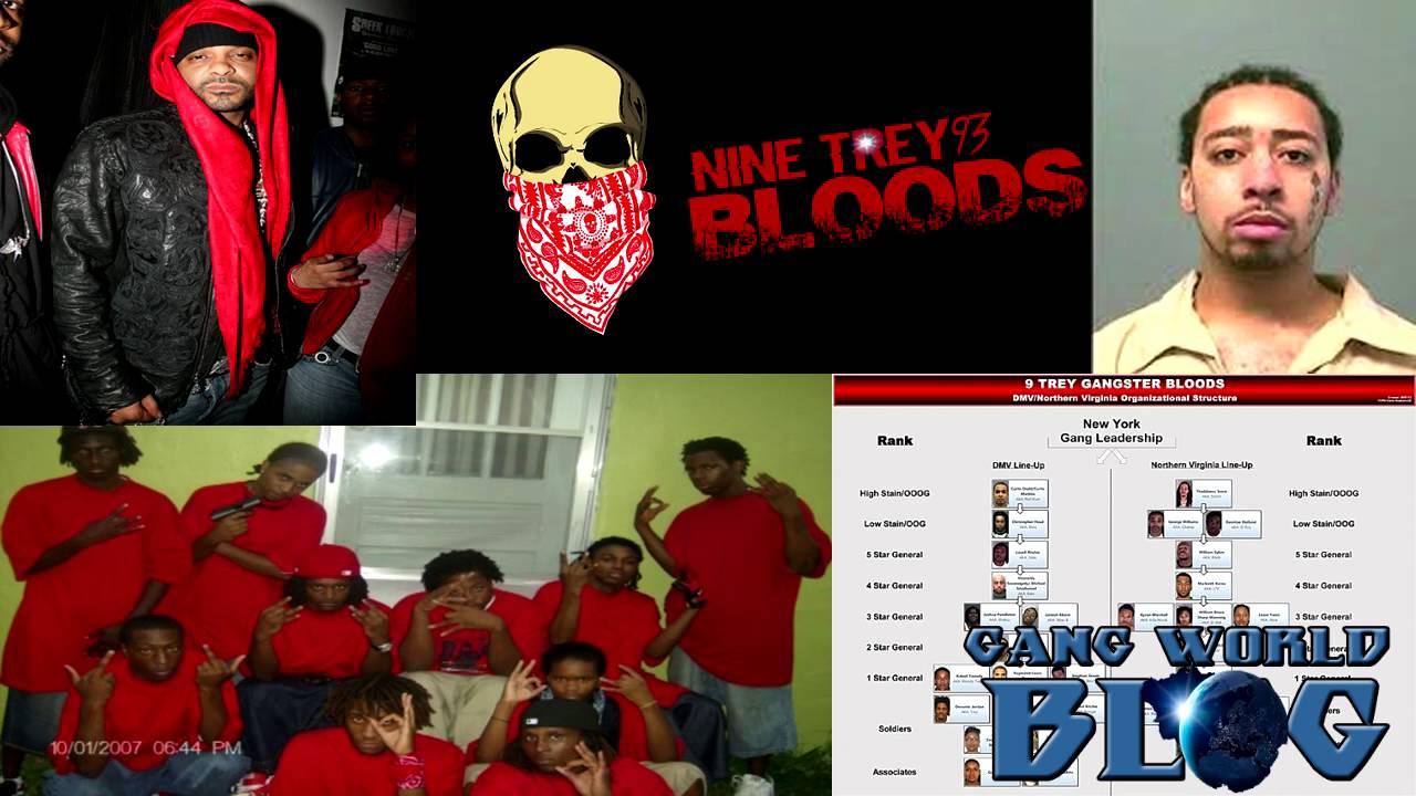 Nine Trey Gangsters UBN Bloods Jim Jone 6ix9ine Trey Way
