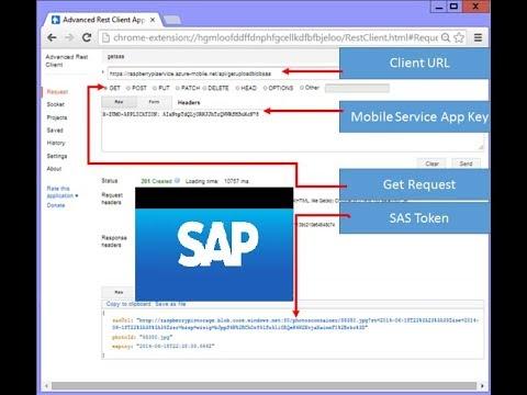 Advance Rest Client, X Csrf Token Tutorial [SAP Gateway Odata Service  Example]