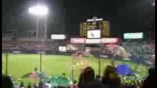 Tokyo Yakult Swallows Umbrella Celebration