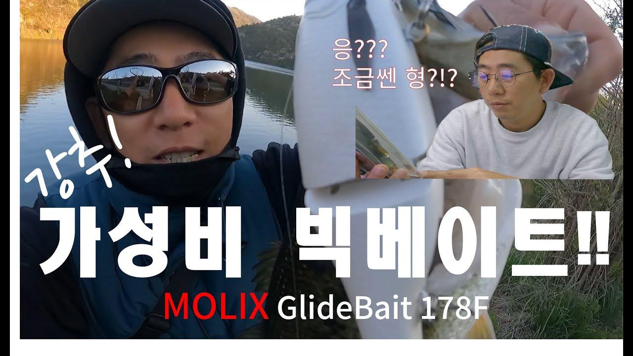 빅베이트 배스낚시 - 강추! 가성비!  MOLIX Glide Bait 178f