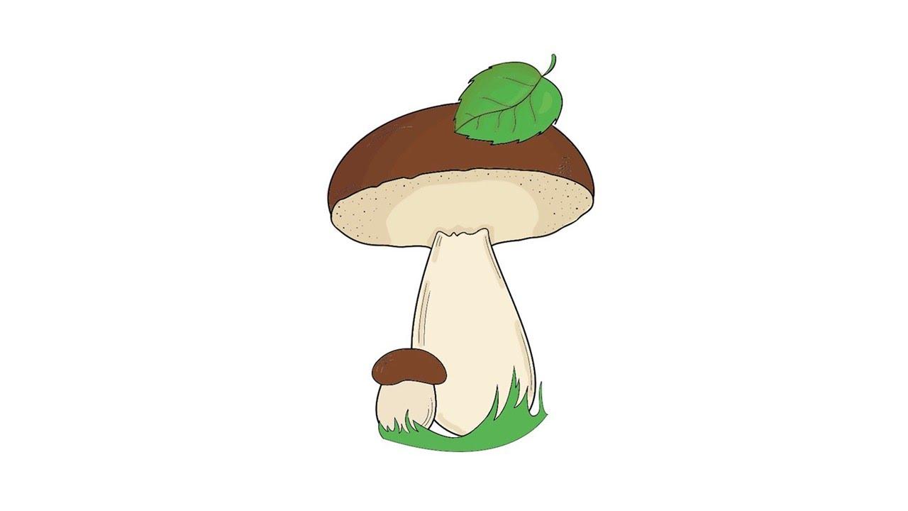 картинка как нарисовать гриб именинникам выходят очереди