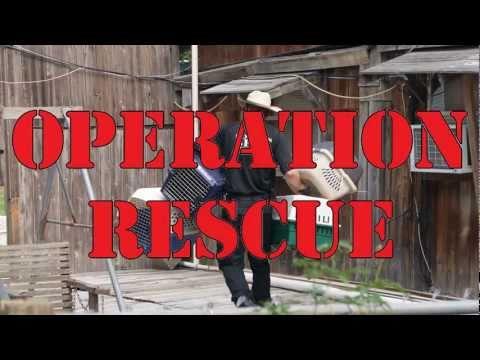 houston-spca-rescues-over-200-dogs- -houston-spca