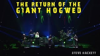 Steve Hackett - The Return of The Giant Hogweed (Live at The Royal Albert Hall)