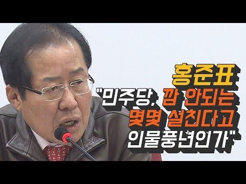 """홍준표 """"민주당, 깜 안되는 몇몇 설친다고 인물풍년인가"""""""