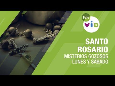 Santo Rosario Misterios Gozosos, Lunes Y Sábado - Tele VID
