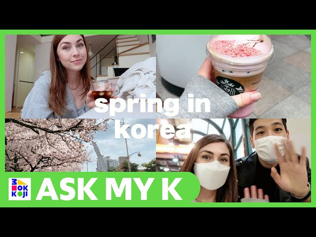 Ask My K : Adrienne Hill - SPRING DAY IN THE LIFE | korea update + cooking with friend