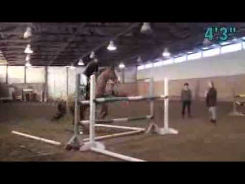 Red Coat Farm High Jump 2013-to 5&396&quot - YouTube