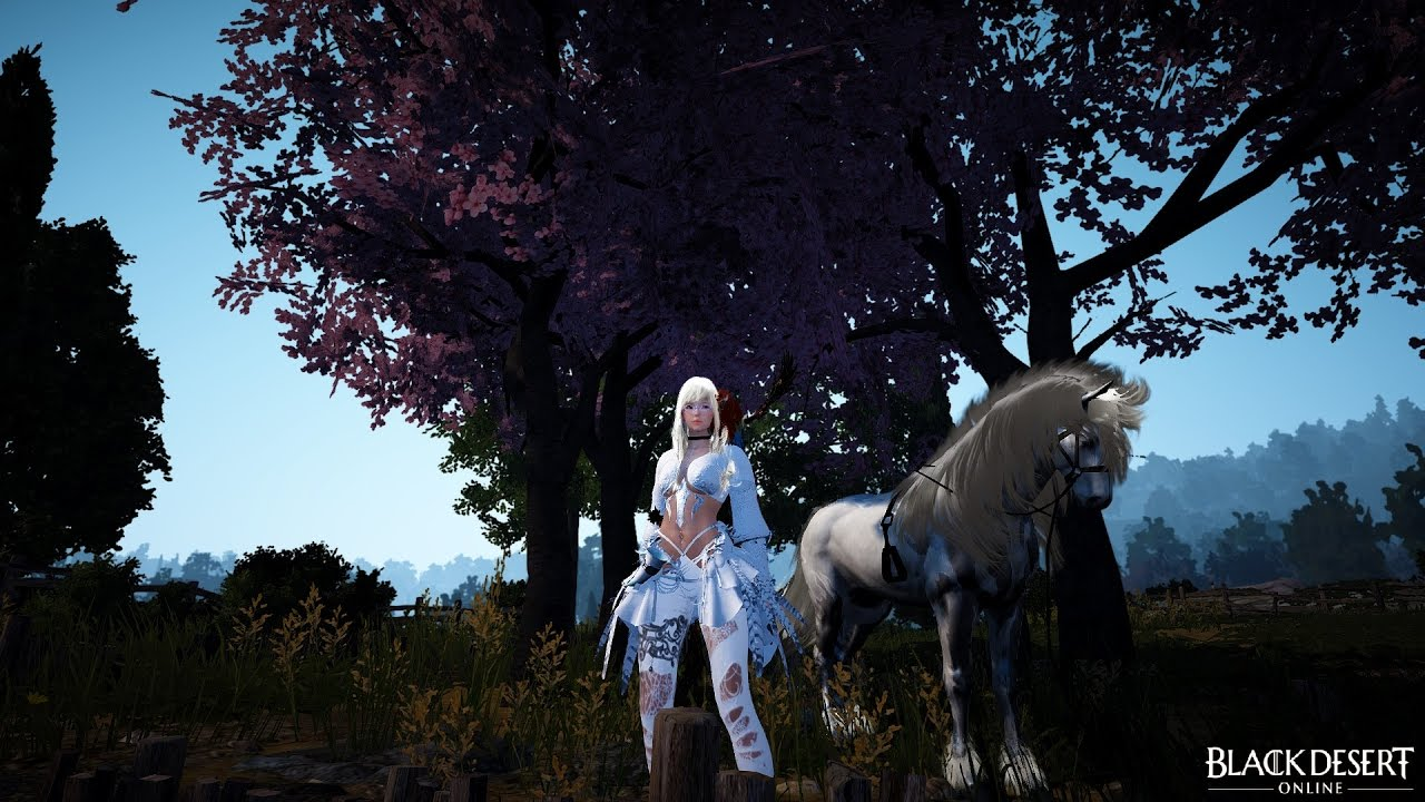 Black Desert [NA] - Easy Way To Get CP and Energy Recovery with Calpheon  Daily Quests