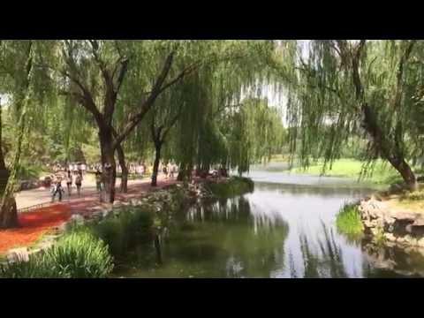 Traveller: China, Beijing, Yuanmin Yuan Ruins Park