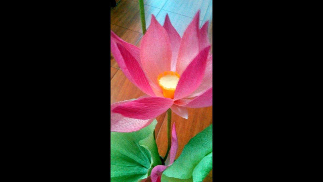 Diy how to make a paper flower lotus leaf part i youtube diy how to make a paper flower lotus leaf part i dhlflorist Image collections