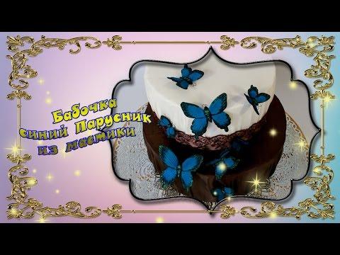 Бабочки из мастики мастер класс. Синий Парусник