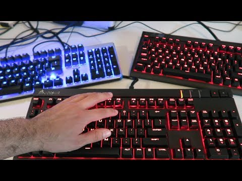 Blue Switches VS Red Switches VS Brown Switches | Mechanical Keyboard Comparison