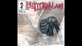 (Full Album) Buckethead - Slug Cartilage (Buckethead Pikes #24)