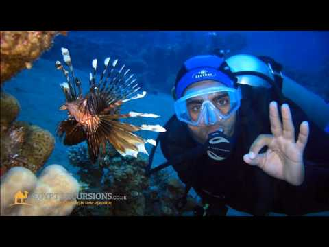 Tours and Excursions from Hurghada