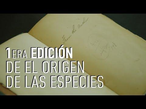 Así es una primera edición de El Origen de las Especies de Charles Darwin