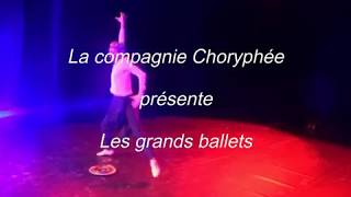 Les grands ballets