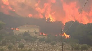 Greek island of Zakynthos ravaged by large forest fires