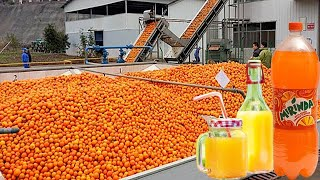 Watch how orange juice is made. Incredible production.
