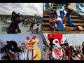 Nightdragon's Anthrocon 2017 Con Video