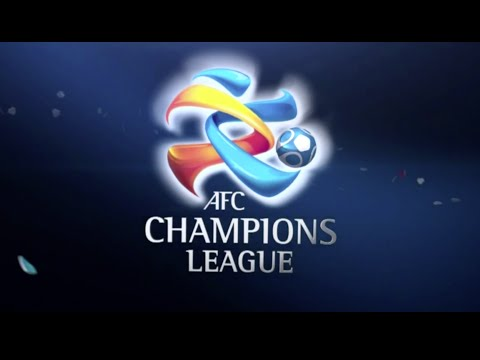 ACL  2014 - Round of 16 - Western Sydney Wanderers v Sanfrecce Hiroshima May 14th