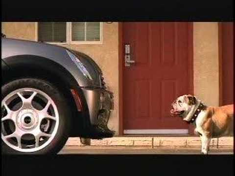 Mini Cooper Ad -- 'Big Dog'