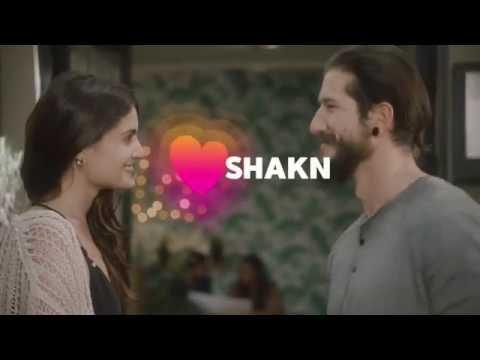 shakn dating app