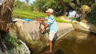 Fish hunting