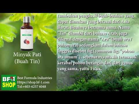 Pati Minyak Wangi Aromatik - Buah Tin (Fig)