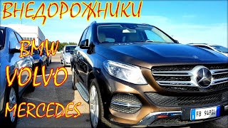 Авто из Литвы, внедорожники и кроссоверы цена в августе.